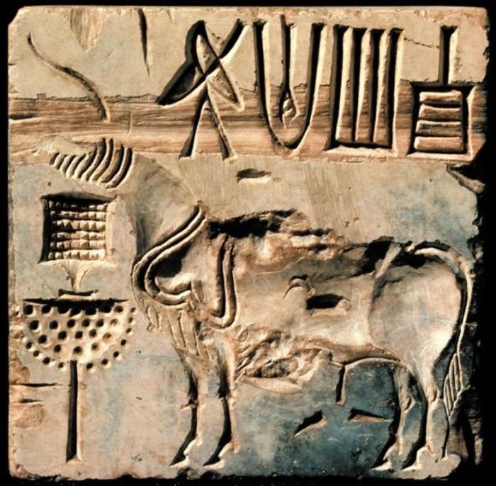 Иероглифоподобные письмена древних горожан. /Фото:pinterest.com